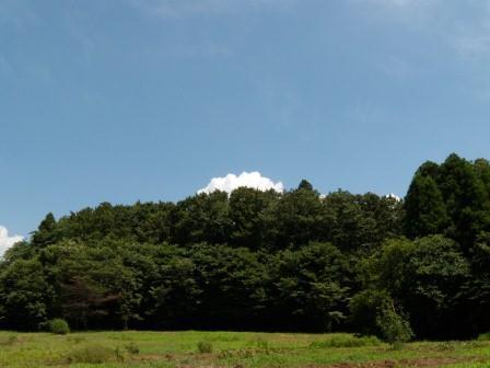 DSCN5695-2.jpg